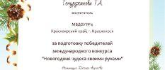 Темурджанова Т.А. 24.01.2020